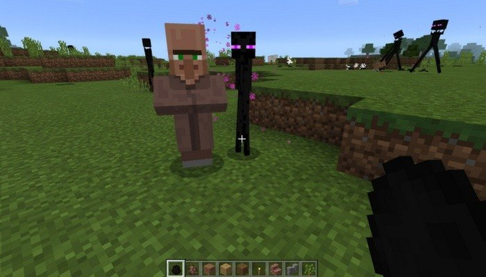 Smaller Enderman
