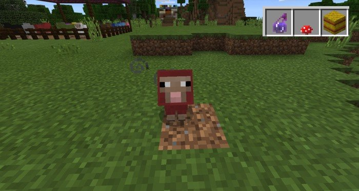 how to tame a sheep in minecraft no mods